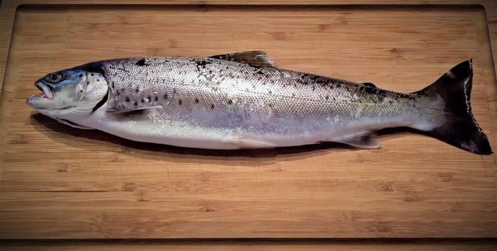 diferencia entre sal para el pescado y sal para la carne